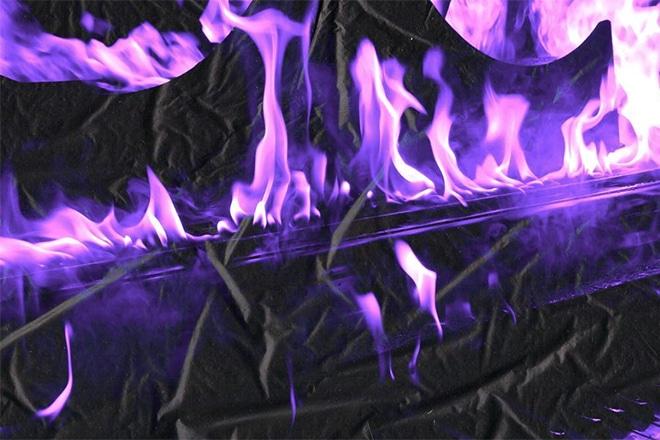 a2 purple