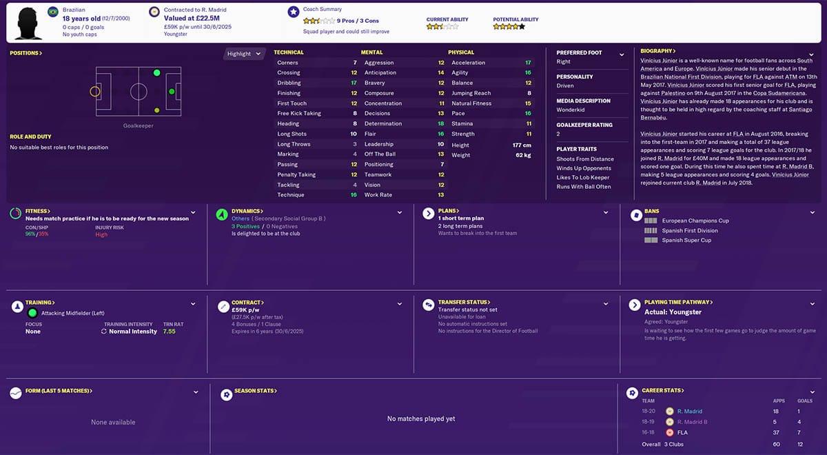 fm20 vinicius junior football manager 2020 real madrid